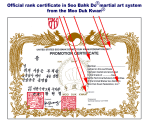 Moo Duk Kwan issued rank certification is recognized worldwide