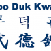 Internationally Certified Instructor At Every Moo Duk Kwan School