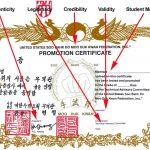 Legitimate Moo Duk Kwan® Certification